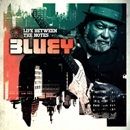 Life Between The Notes (CD)