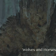 Wolves And Horses EP (CD)