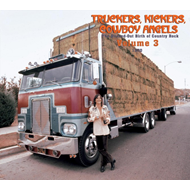 Produktbilde for Truckers, Kickers, Cowboy Angels - The Blissed-Out Birth Of Country Rock Vol. 3 1970 (USA-import) (2CD)