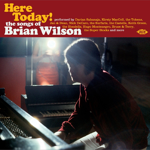 Here Today! - The Songs Of Brian Wilson (CD)