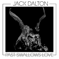 Past Swallows Love (CD)