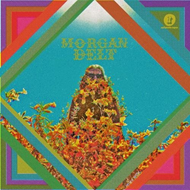 Morgan Delt (CD)