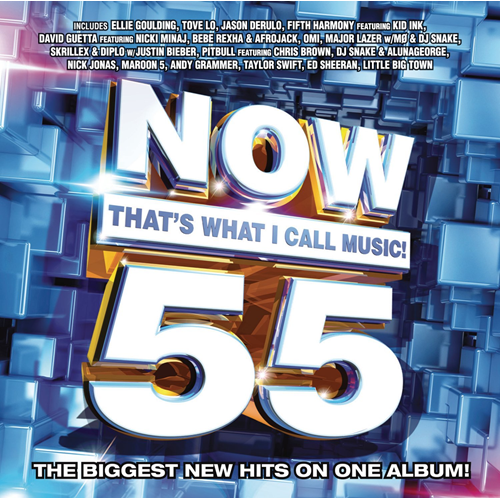Now That's What I Call Music 55 (CD)