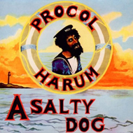 Produktbilde for A Salty Dog (2CD Remastered)