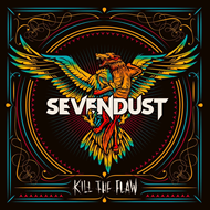 Kill The Flaw (CD)