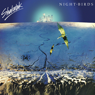 Night Birds (CD)