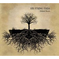 Diluted Roots (CD)