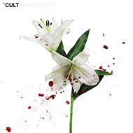 Hidden City (CD)