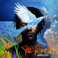 The Traveller (CD)