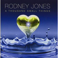 A Thousand Small Things (CD)