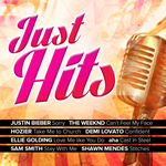 Just Hits (CD)