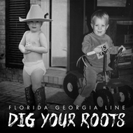 Dig Your Roots (CD)
