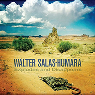 Explodes And Disappears (CD)
