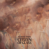 Citizen Of Glass (CD)