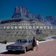 Your Wilderness (CD)