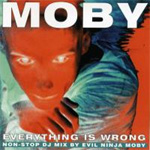 Everything Is Wrong - DJ Mix Album (2CD)