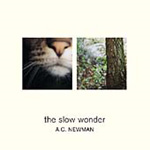 The Slow Wonder (CD)