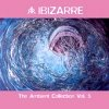 The Ambient Collection Vol.5 (CD)