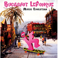 Music Evolution (CD)