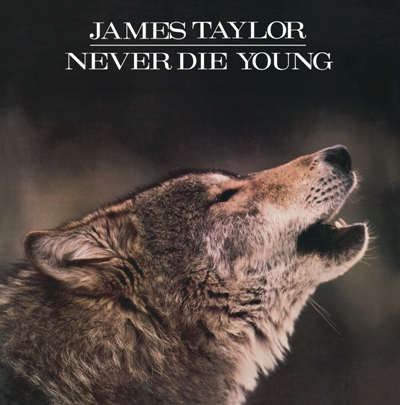 Never Die Young (CD)