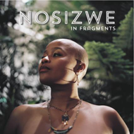 In Fragments (CD)