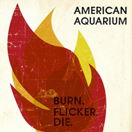Burn.Flicker.Die (CD)