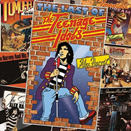 The Last Of The Teenage Idols (4CD)
