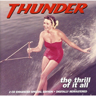 Produktbilde for The Thrill Of It All (2CD)