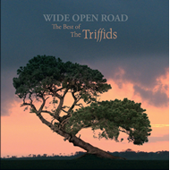 Wide Open Road: The Best Of The Triffids (CD)