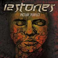 Picture Perfect (CD)