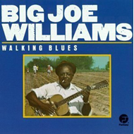 Walking Blues (CD)
