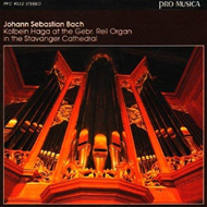 Produktbilde for Bach: Toccata & Fuge D Moll (CD)
