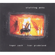 Visiting Ants (CD)
