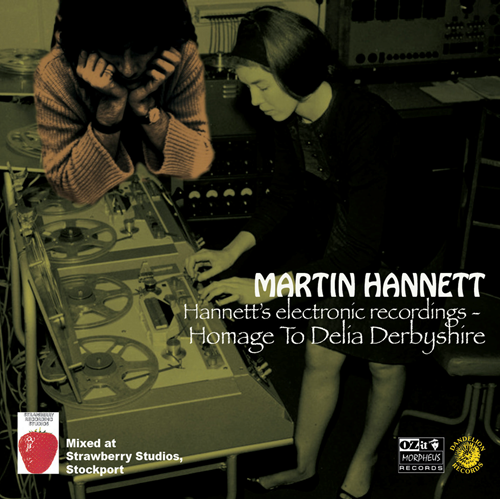 Homage To Delia Derbyshire (CD)
