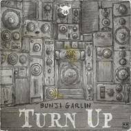 Turn Up (CD)
