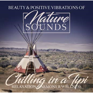 Chilling In A Tipi (CD)