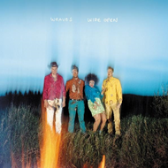 Wide Open (CD)