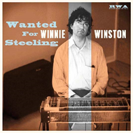 Wanted For Steeling (CD)