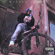 Wasted Talent (CD)
