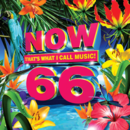 Now That's What I Call Music 66 (CD)