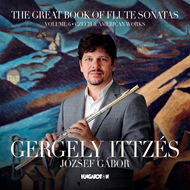 The Great Book Of Flute Sonatas, Vol. 6: Czech  American Works (CD)