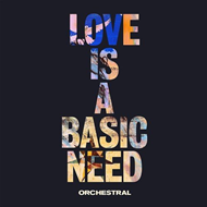 Love Is A Basic Need - Orchestra (CD)