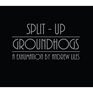 Produktbilde for Groundhogs/Split Up (CD)