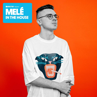 Defected Presents Melé In The House (2CD)