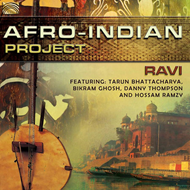 Afro-Indian Project (CD)