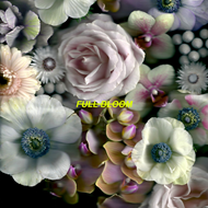 Full Bloom (CD)