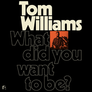 What Did You Want To Be? (CD)