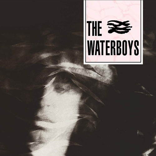The Waterboys (CD)