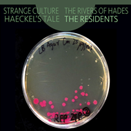 Produktbilde for Strange Culture/Rivers Of Hades/Haeckel' (CD)