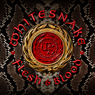 Produktbilde for Flesh & Blood - Deluxe Edition (CD + DVD-A)